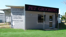 Gorgeous Grooming – 5 Star Pet Salon