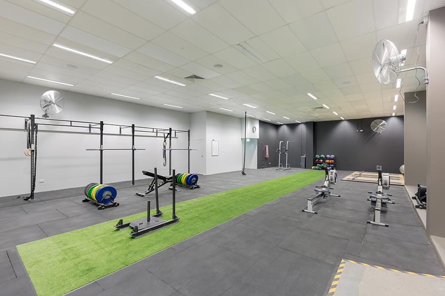 Lifestyle gym less than half the price of setup