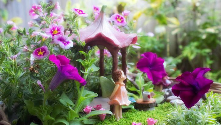 Spring Fairy Garden - Potted Colour