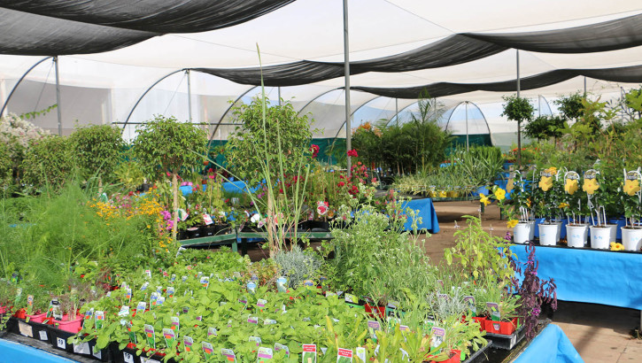 Main greenhouse 2